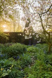 475 best tuin garden images on pinterest garden ideas garden