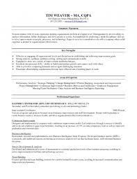 leadership skills resume examples 17 best clean resumes images on