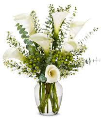 cala lillies sympathy calla lilies at from you flowers