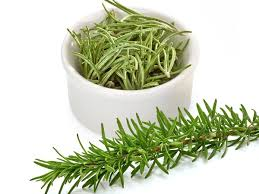 benefits of native plants 11 impressive benefits of rosemary organic facts