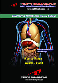anatomy and human biology image collections learn human anatomy