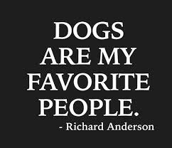 boxer dog sayings best 20 dog sayings ideas on pinterest puppy quotes rescue dog