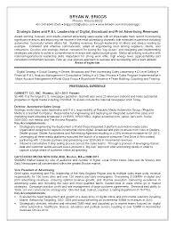 sample sales and marketing resume online media sales resume sample resume for sales executive http jobresumesample com pinterest