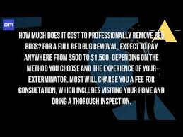 how much does it cost to get rid of bed bugs