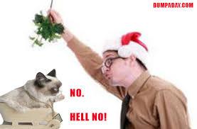 Christmas Grumpy Cat Meme - grumpy cat christmas mistle toe cats grumpy cat
