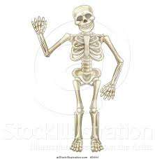 Halloween Skeleton Cartoon Vector Illustration Of A Happy Cartoon Skeleton Character Waving