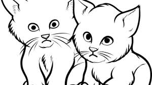 drawings of cats and kittens cute cat drawing how to draw cats and