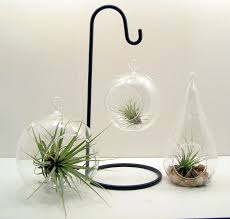 christmas ornament hanging glass terrarium garden ideas design