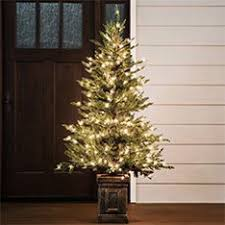 where to buy brown christmas tree shop christmas trees at lowes