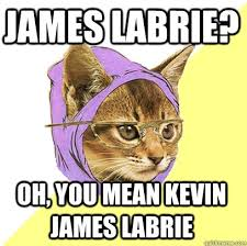 James Labrie Meme - james labrie oh you mean kevin james labrie hipster kitty