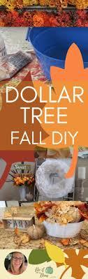 best 25 tree shop ideas on gift shop decor
