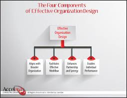 how to assess your organizational structure accelera consulting