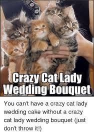 Crazy Cat Memes - 25 best memes about crazy cats crazy cats memes