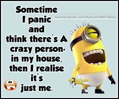 Despicable Me Meme - despicable me meme quotes pinterest house humour and funny quotes