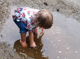 Not Contaminated With Oil Washing by Soil Contaminants Soil Science Society Of America