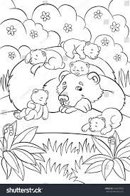 coloring pages wild animals kind bear stock vector 426073825
