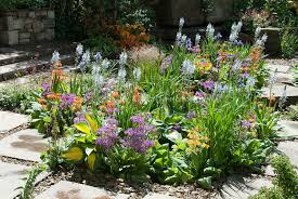 Garden Flowers Ideas Garden Flowers In May Or June Plant Flower Stock 20