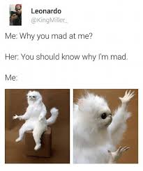 Are You Mad At Me Meme - leonardo miller me why you mad at me her you should know why i m