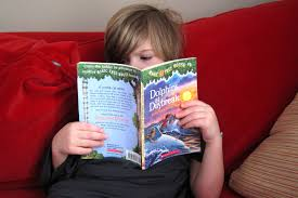 magic tree house thanksgiving on thursday dolphins at daybreak bella u0027s book buzz blog
