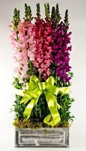 Wholesale Floral Centerpieces by Snapdragon Garden Mother U0027s Day Floral Arrangement Wholesale