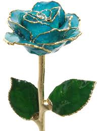 Teal Roses Free Download Home 187 Colored Roses 187 Teal Rose