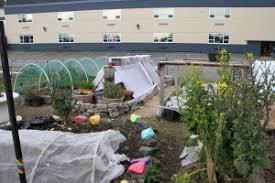 blatchley community gardens u2013 sitka local foods network
