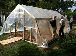 backyards winsome backyard greenhouse backyard greenhouse kits