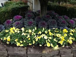 Flower Garden Ideas New Jersey Perennial Garden Perennial Flowers New Jersey New