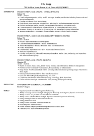 Technical Product Manager Resume Sample Product Manager Online Resume Samples Velvet Jobs