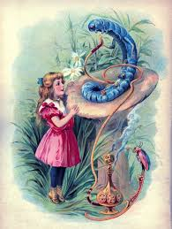 vintage graphic alice in wonderland with caterpillar vintage
