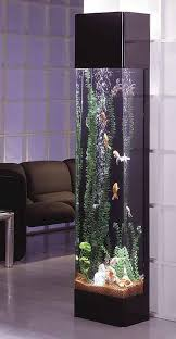 best 25 aquarium ideas ideas on pinterest aquarium fish tank