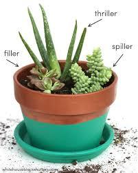 Indoor Plant Arrangements Best 25 Indoor Succulent Garden Ideas On Pinterest Indoor