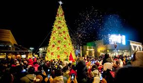 where to buy christmas tree lights outdoor christmas trees and giant tower trees thomas brady and