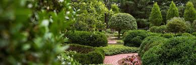 Warren Family Garden Center Garden Tours Lexington Kentucky Visitor Information