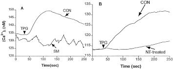 effects of cigarette smoke on immune response chronic exposure to