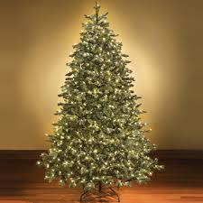fresh design pre lit led christmas trees home accents holiday 9 ft