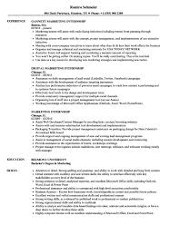 lvn resume template exle of resume with objectives also lvn resume template