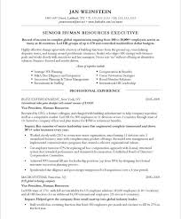 Human Resource Resume Sample by 11 Best Executive Resume Samples Images On Pinterest Executive