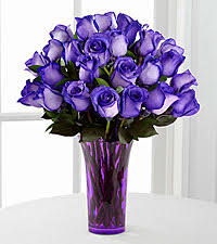 purple roses for sale purple roses pinteres