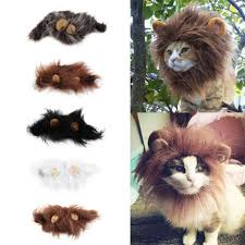 pet cat dog emulation lion hair mane ears head cap autumn winter