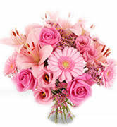 Send Flowers Cheap Send Flowers To Norway Cheap Online Nationwide Delivery