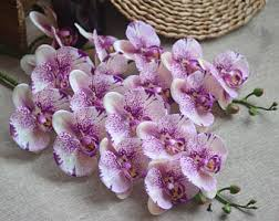 purple orchids purple orchid etsy