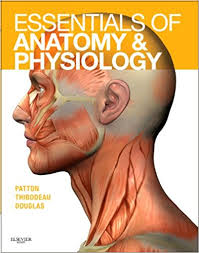 Nose Anatomy And Physiology Essentials Of Anatomy And Physiology Text And Anatomy And