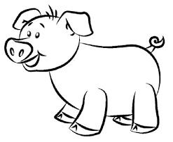 coloring magnificent pig cartoon drawing draw 20