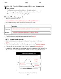 cp biology worksheet u2013 catalysts