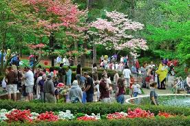 glencairn gardens a place to meet old friends and new