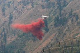 Bc Wildfire Drone by Video Pod Of Orcas Caught On Drone Barriere Star Journal