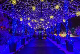 phipps conservatory christmas lights love phipps winter light show here s how we helped hanlon