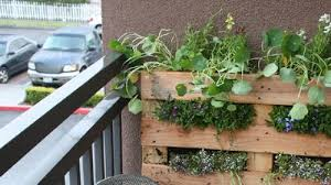 no yard no problem 5 diy garden projects for people who don u0027t