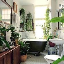 tropical bathroom ideas bathroom oasis home home oasis houseplants